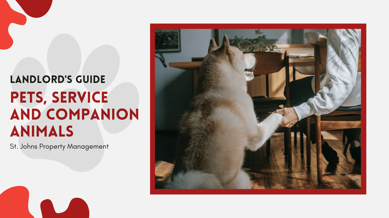 Landlord's Guide to Pets, Service and Companion Animals | St. Johns Property Management - article banner